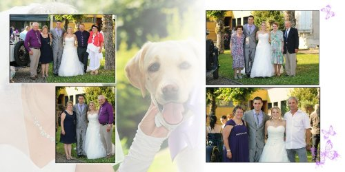 Photographe mariage - Photolouis  l'Image Pro  - photo 19
