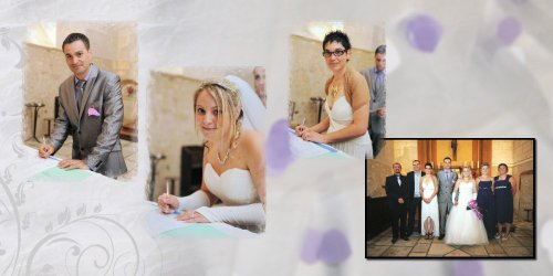 Photographe mariage - Photolouis  l'Image Pro  - photo 16