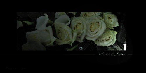 Photographe mariage - Color Systems - photo 17