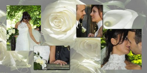 Photographe mariage - Color Systems - photo 8