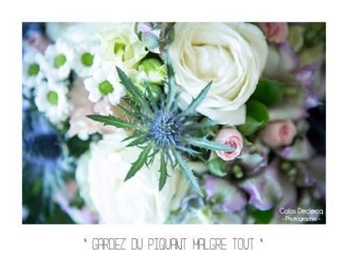 Photographe mariage -  Colas Declercq - Photographe - photo 11