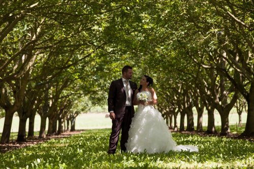 Photographe mariage - JL Photographie mariage. - photo 116