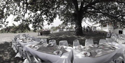 Photographe mariage - JL Photographie mariage. - photo 185