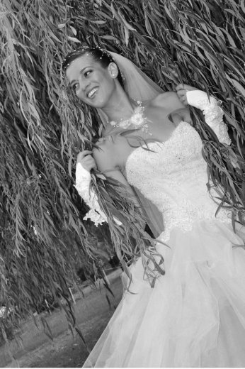 Photographe mariage - Studio Photos Fasolo - photo 182