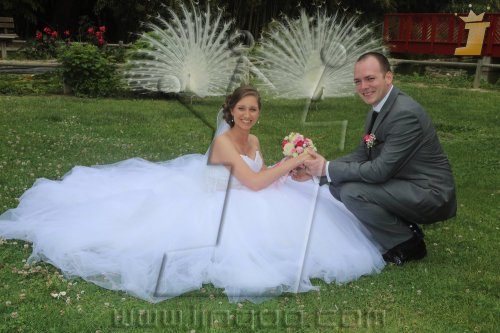 Photographe mariage - CORREAPHOTO PORTRAITISTE - photo 33