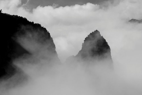 Photographe - Sylvain Brajeul Photographe - photo 17