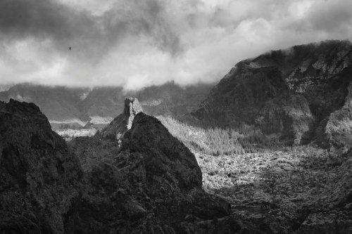 Photographe - Sylvain Brajeul Photographe - photo 15