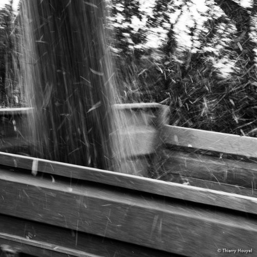 Photographe - Thierry HOUYEL - photo 119