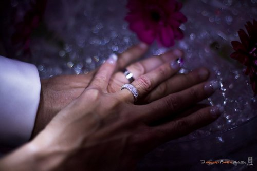 Photographe mariage - Bernard Favre Photos - photo 75