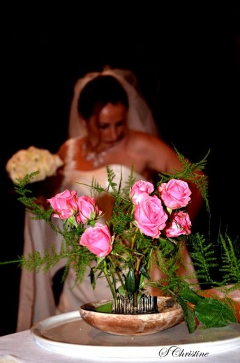 Photographe mariage - Christine Saurin - photo 1